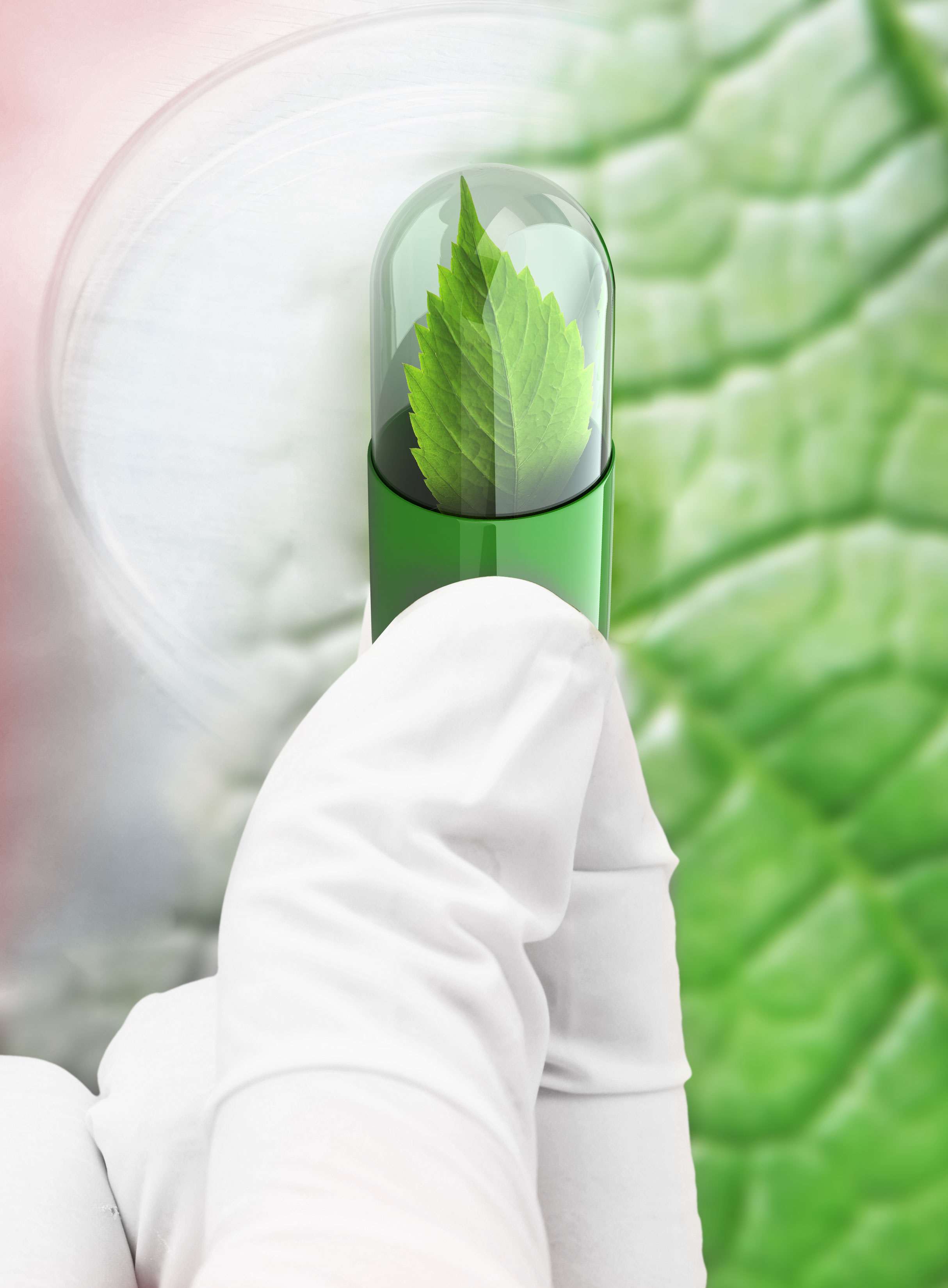 พาตาร์แลบ Patar Lab Patarlab พาตาร์ ยา อาหารเสริม เสริมอาหาร OEM รับผลิตยา ผลิตยา ผลิตอาหารเสริม